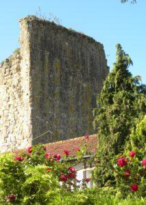Les ruines de la Tour Carré